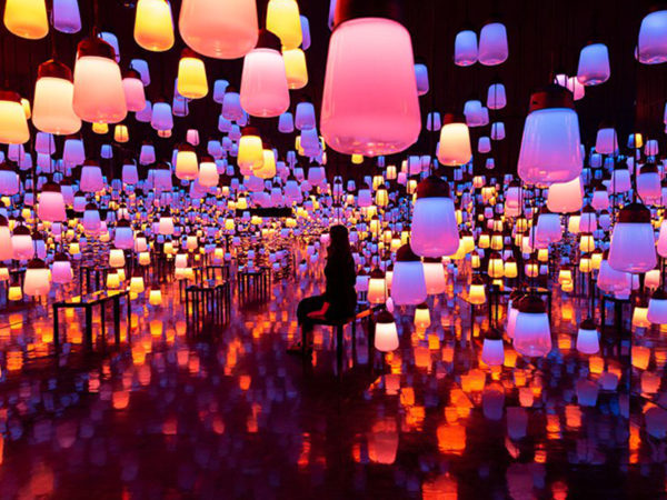 Forest-of-Lamps-Image-1